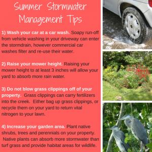 2017 Summer Tips